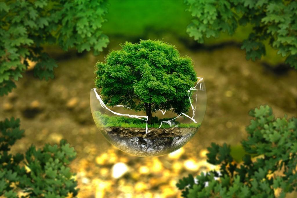 Regeneracja części a ekologia